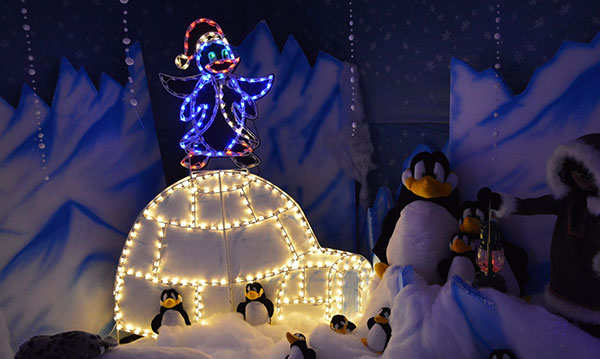 A light display at winter fantasy land in lincoln park