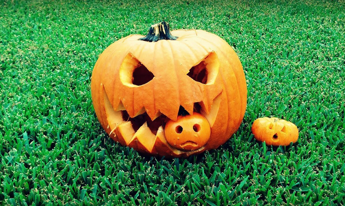 Top Cool Pumpkin Carving Ideas And Decor Tricks For Families Detroit And Ann Arbor Metro Parent