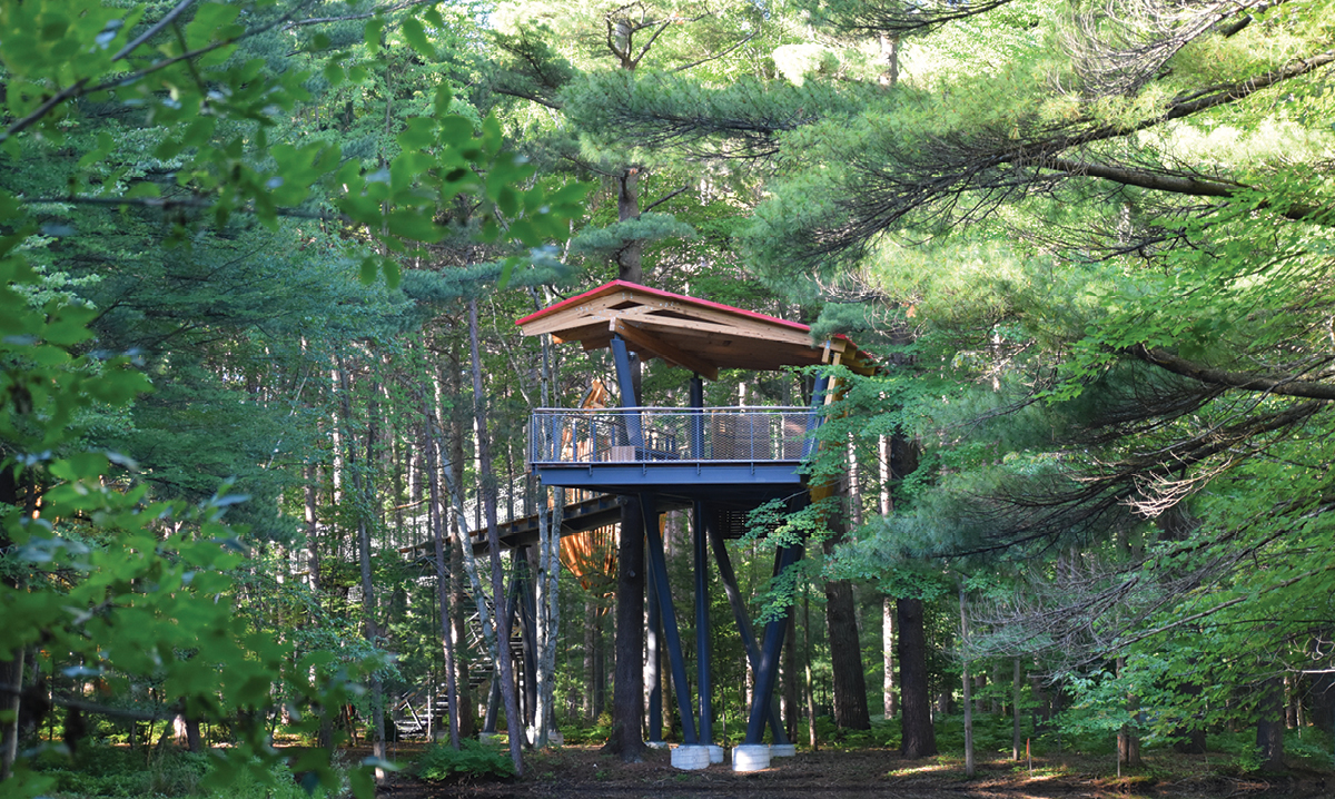 canopy walk at whiting forest of dow gardens in midland