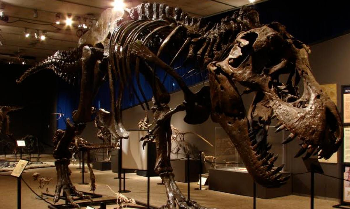 Doom of the dinosaurs exhibit at Cranbrook Institute of Science