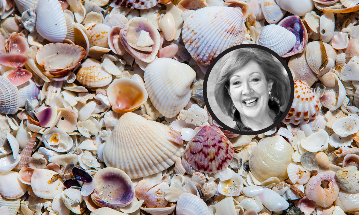 A pile of seashells with an inset of author Cindy La Ferle