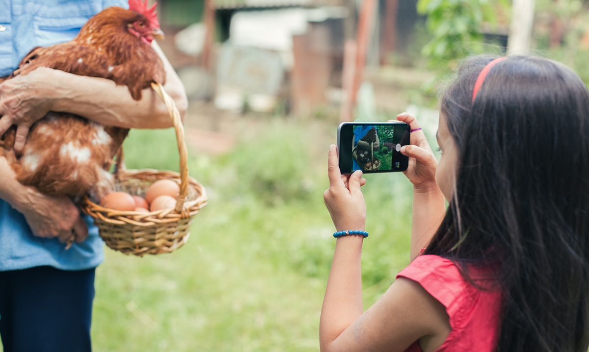 A young girl takes a smartphone video of a person holding a chicken and basket of eggs