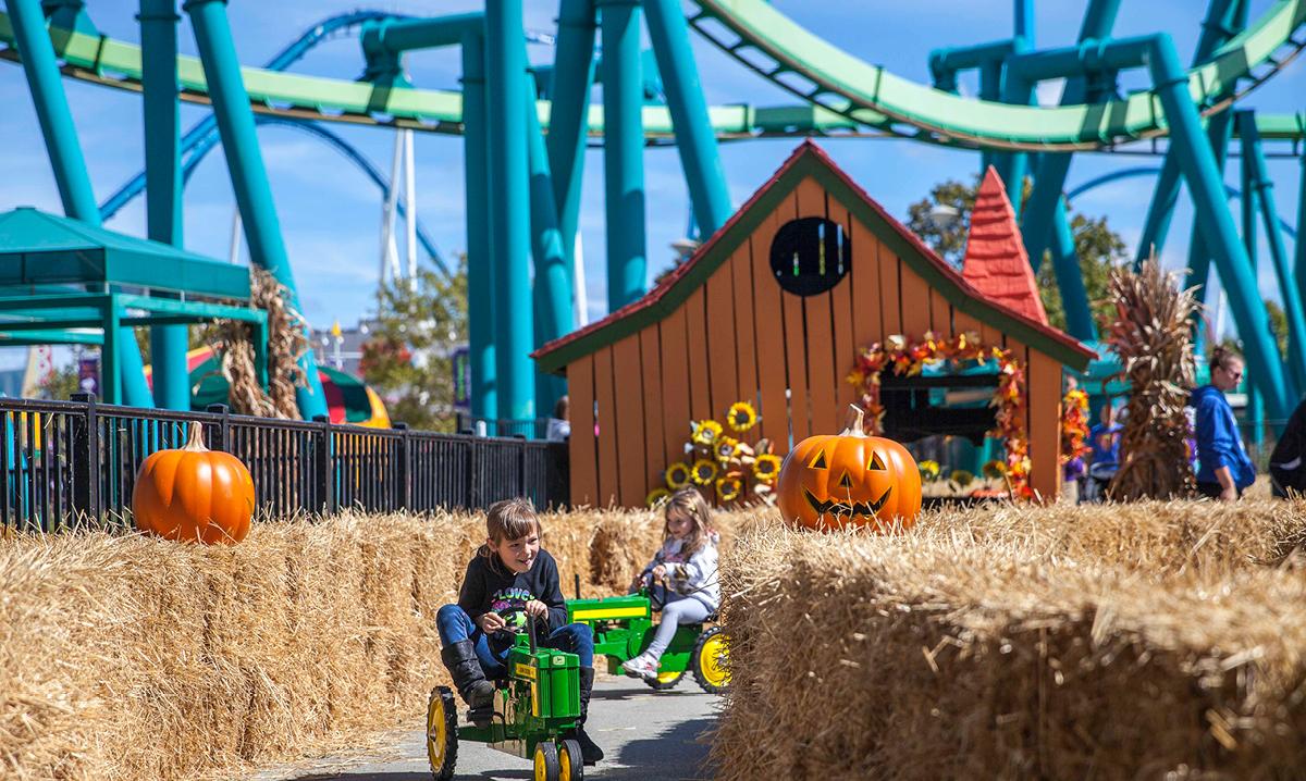 Win Family Passes to the Cedar Point Amusement Park