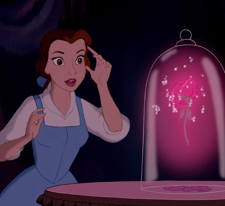 Belle from Disney's beauty and the beast looks at rose