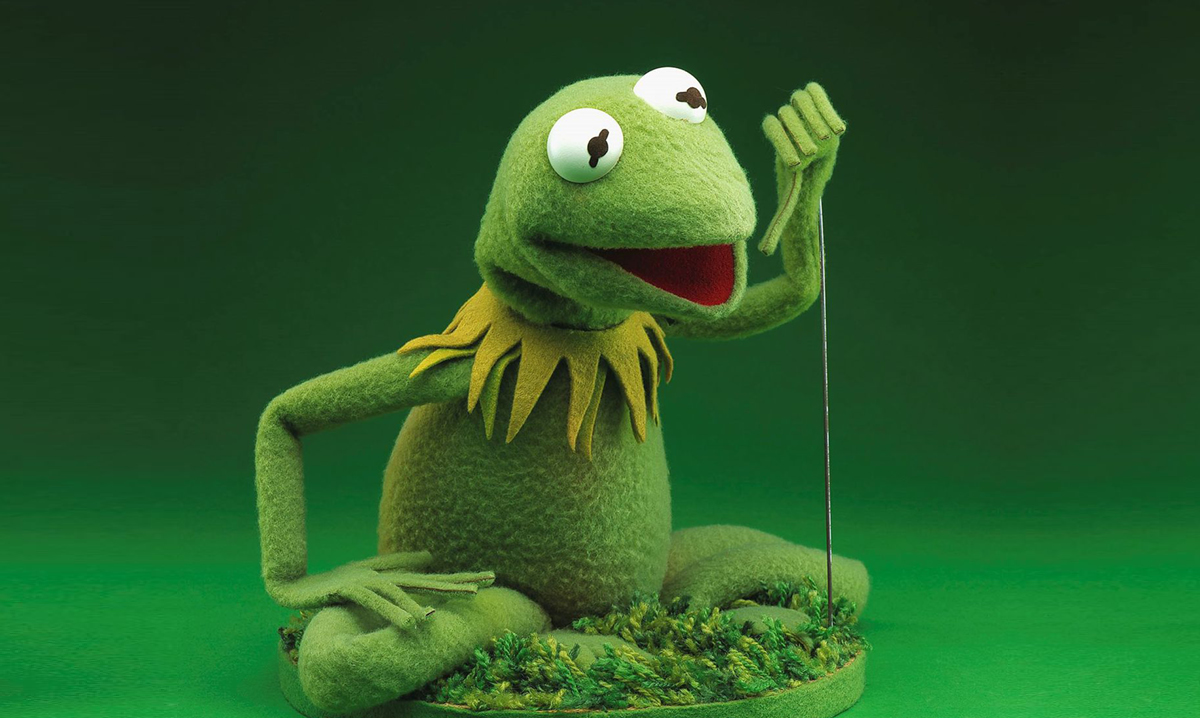 Kermit the Frog puppet on a green background