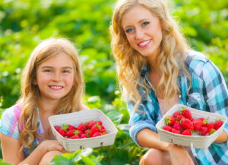 A woman and child holding a basket of strawberries while sitting in a strawberry field