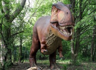 A statue of a T-rex in the forest from the Detroit Zoo