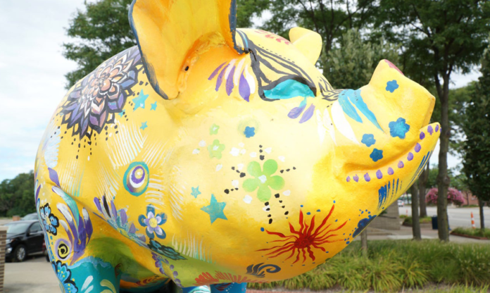 Close-up of Willy the Pig
