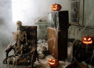 Image of a skeleton and pumpkin display