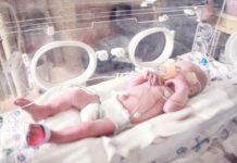Baby in an incubator
