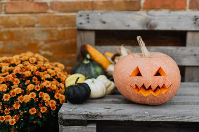 A carved pumpkin on a bench