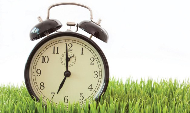 An alarm clock in the grass