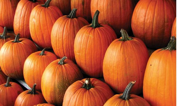 Fall Pumpkin Birthday Party Ideas