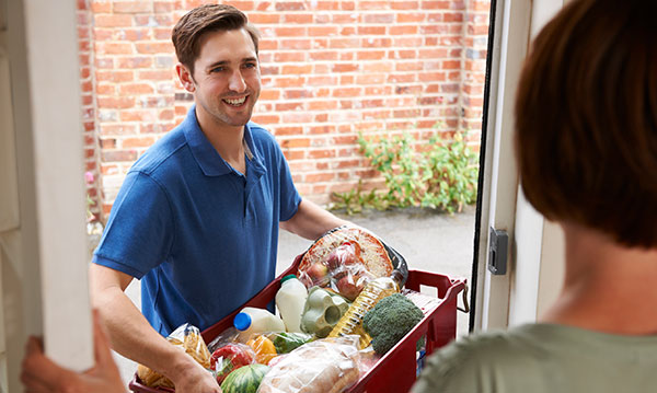 Grocery Delivery Services in Southeast Michigan