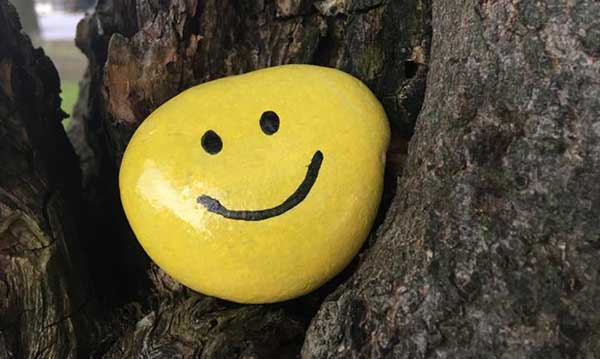 A painted smiley face rock in a tree