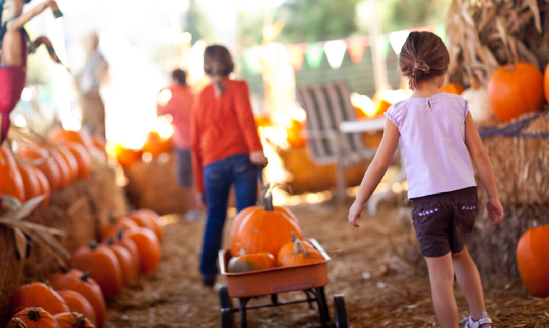 fall-fun-in-macomb-county-istock-feverpitched